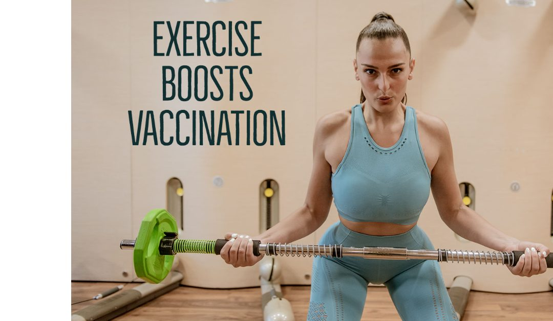 Exercise boosts Vaccination